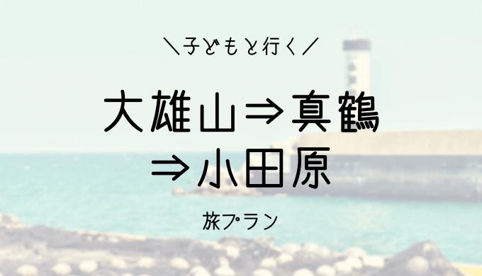 【大雄山・小田原・真鶴】ハイシーズンの混雑を避けて子連れ旅行プランブログ