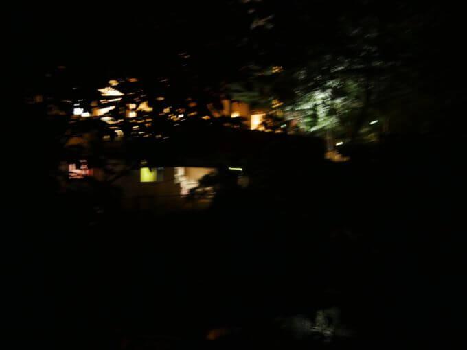 庭園で蛍観賞ができる宿「一の瀬」のホタル