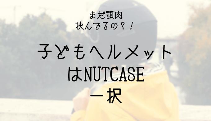ナットケースリトルナッティの口コミと感想!ベルズーム2・クミカニコと比較ブログ!