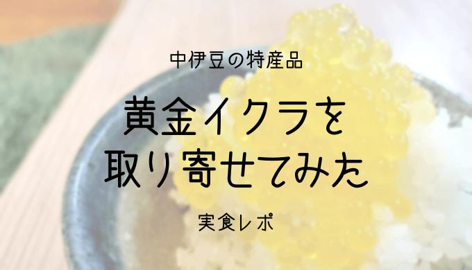中伊豆の特産品「黄金イクラ」を取り寄せて食べてみた。味の感想と現地で食べられるお店を解説